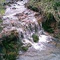 #potok #strumyk #woda