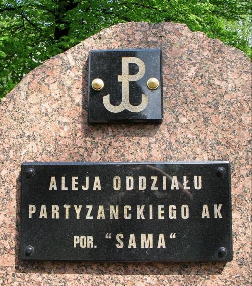 KOLUSZKI, PARK. OBELISK POŚWIĘCONY ŻOŁNIERZOM VI ODDZIAŁU PARTYZANCKIEGO AK DOWODZONEGO PRZEZ por. SAMA. pomnik #por #Sam #RomualdZiółkowskiSam #AkcjaBurza #ObwódAK #Brzeziny #Koluszki #pomnik #foto #zdjęcie