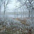 #jezioro #zima #ścieżka