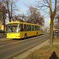 TOMASZÓW MAZOWIECKI - autobus komunikacji miejskiej #autobus #TomaszówMazowiecki #KomunikacjaMiejska #miasto #Łódzkie