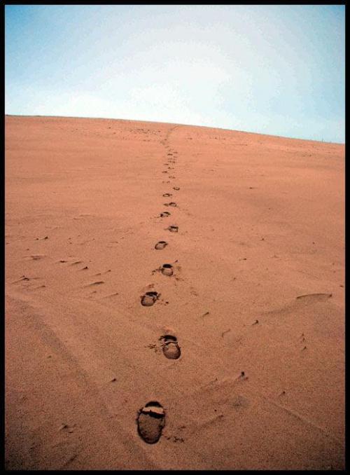 Nie ma, nie ma wody na pustyni ... Góra Łącka 42 mnpm #Łeba #plaża #morze #wydmy